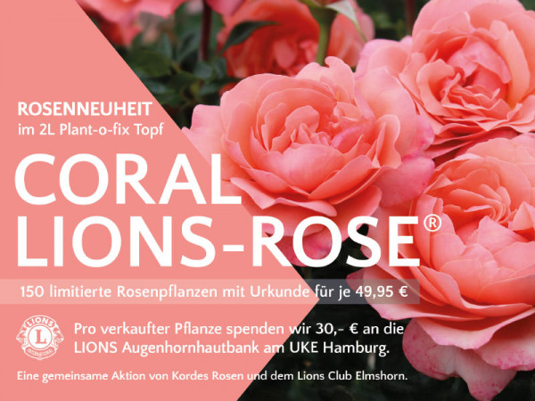 coral-lions-rose